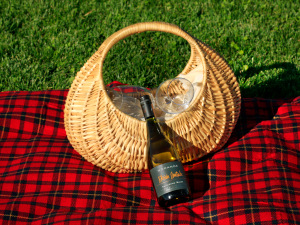 Picnic Basket and Red Picnic Blanket, Chile
