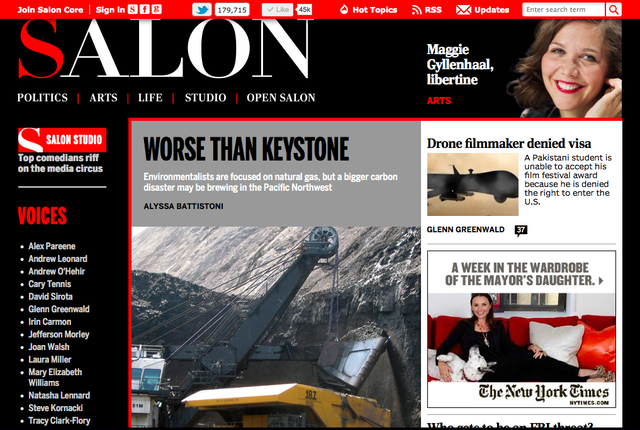 Salon_screenshot_-_May_18,_2012